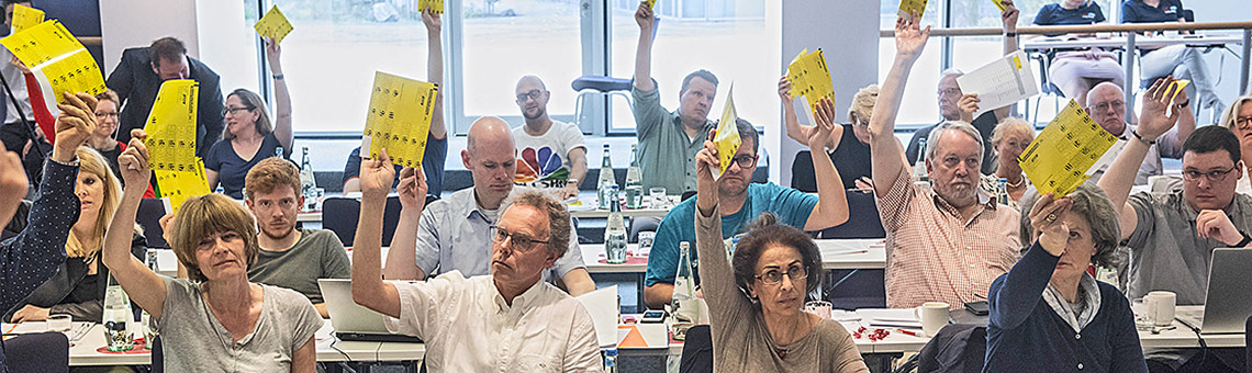Bei den meisten Abstimmungen herrschte Einigkeit.   Foto: Arne Pöhnert
