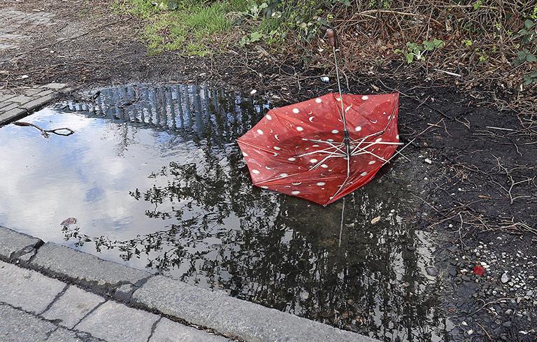 Wenn es für Freie hart auf hart kommt: Gibt es einen Rettungsschirm oder stehen sie allein im Regen? | Foto: txt